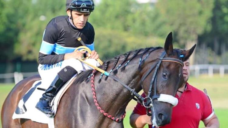 Halis Karataş bindiği atı yumrukladı