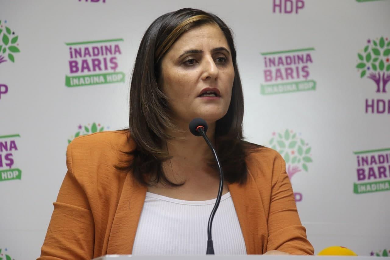 İçişleri Bakanı Soylu'dan çok özel açıklamalar! Gara'ya giden HDP'li vekilin ismini verdi